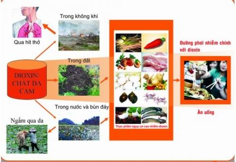 Giảm nguy cơ nhiễm dioxin từ thực phẩm