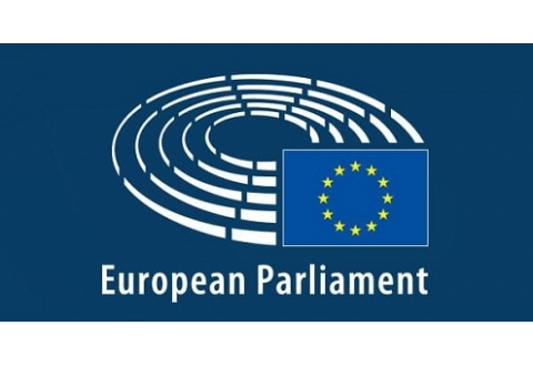 AO consequence settlement discussed at European Parliament