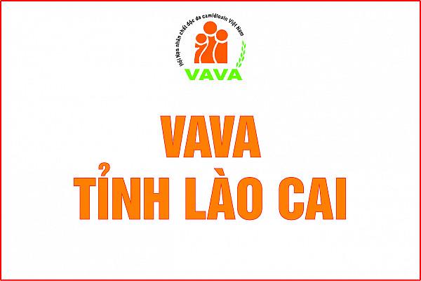 Hội Nạn nhân chất độc da cam/dioxin tỉnh Lào Cai