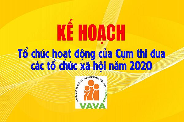 Kế hoạch tổ chức hoạt động của Cụm thi đua các tổ chức xã hội năm 2020
